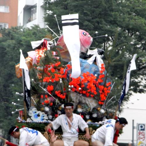 8yamakasa2.JPG